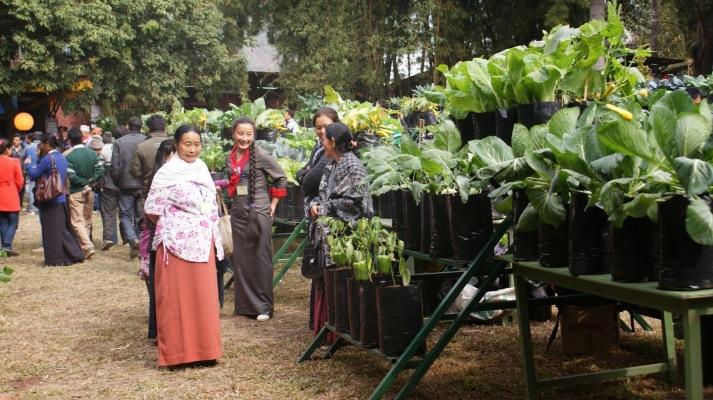 Sikkim-Organic-State
